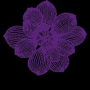 Logo Parque Manacás